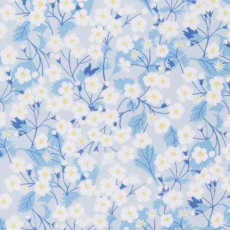 Mitsi bleu dragée